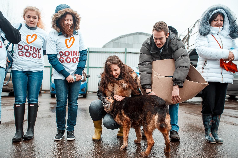 Ayuda a un Refugio de Animales 78