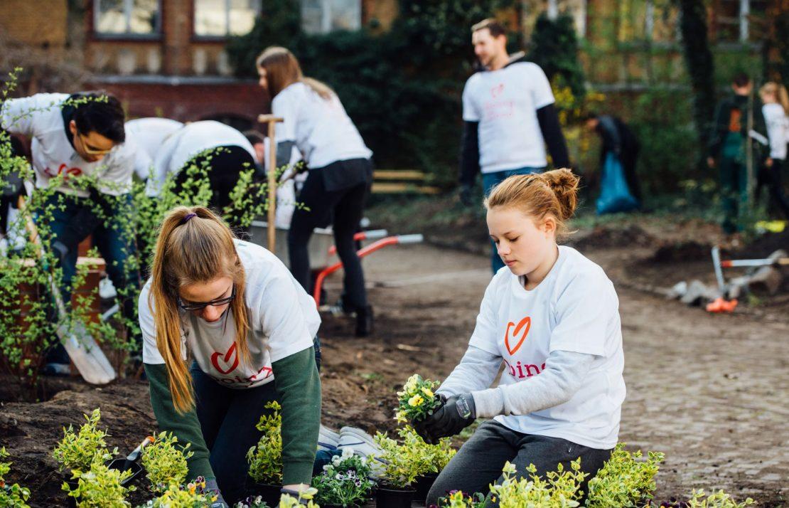 Creating an Urban Garden