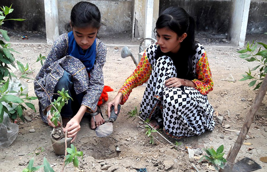 Kids planting saplings in their school