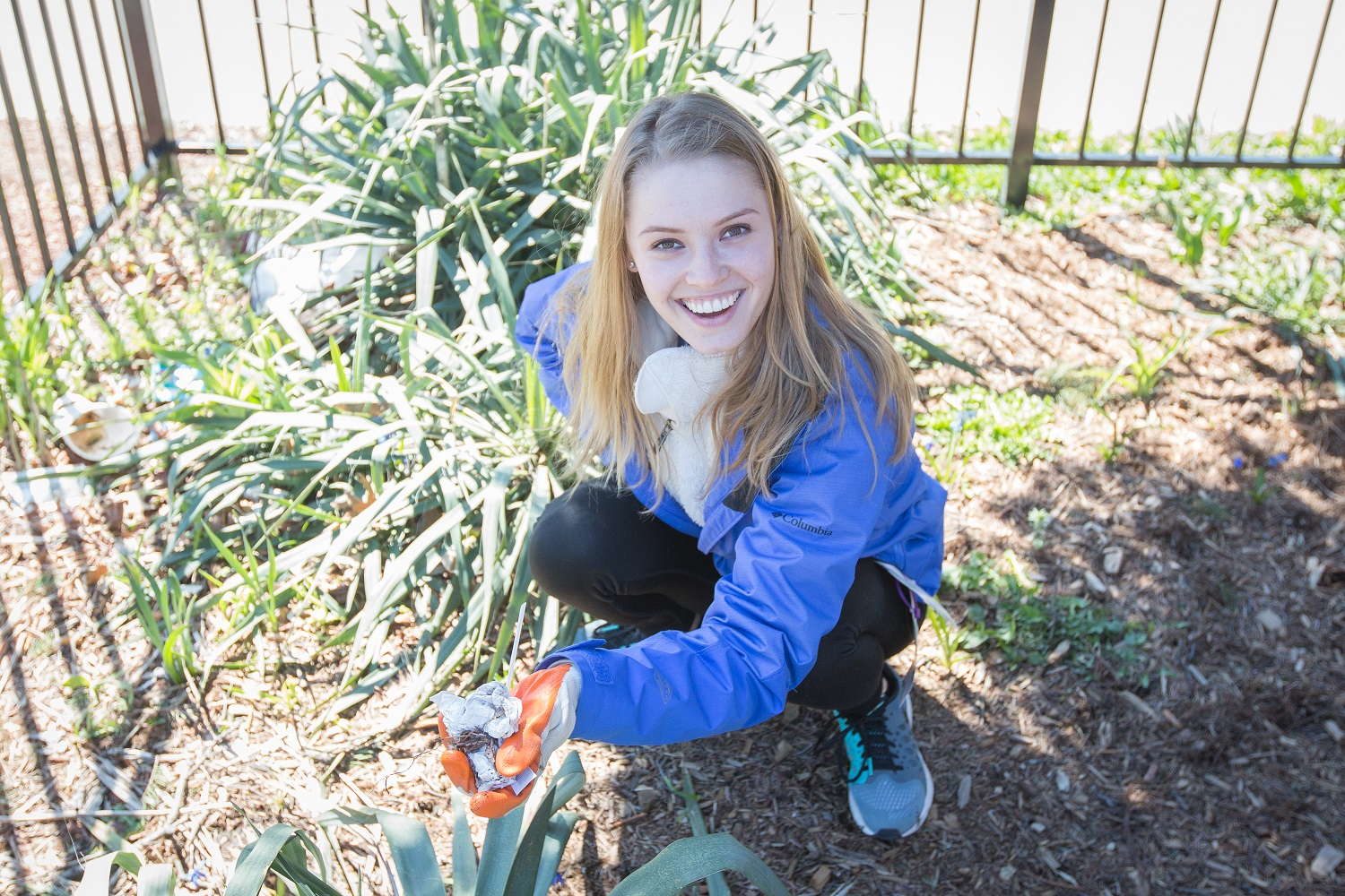 Northeastern Hillel plants and cleans up in a local park.