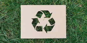 5 Ways You Can Reduce Waste Today